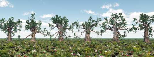 Knorrige Bäume