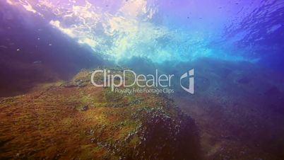 Great diving at Roca Partida rock in the Pacific Ocean, Mexico