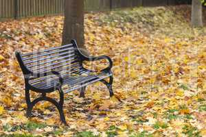 Loss Bereavement Concept Empty Park Bench