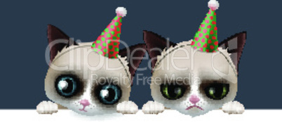 Cute happy birthday card with fun grumpy and siamese cats, hipster design, vector illustration.