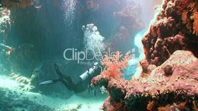 Exciting diving in the underwater cave reef St Johns Red sea