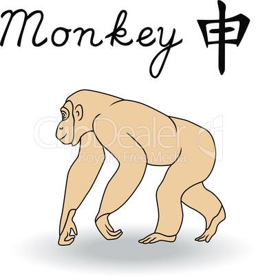 Eastern Zodiac Sign Monkey