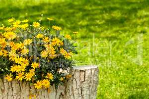 A Stone Tree Trunk Statue in a Yard Setting With Yellow Daisies