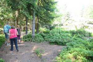 Wandern am Pfahl bei Viechtach