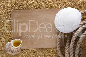 Ocean shell on the sand