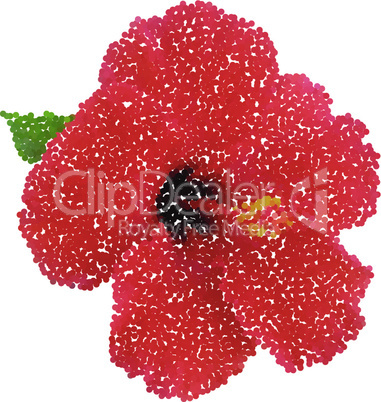 Hibiscus dotted flower