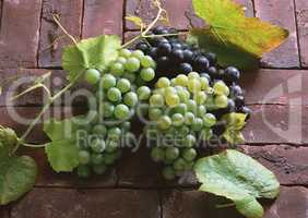 Natural Fruit Harvest