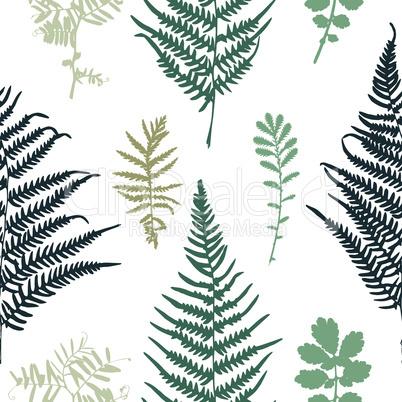 Vector illustration of fern seamless pattern