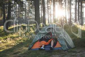 Tent in the forest on sunlight