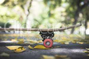 Skateboard in the park