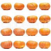 Sixteen fresh pumpkins