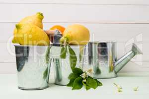 Limes and vintage metal retro watering cans