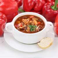 Gesunde Ernährung Gulasch Suppe Gulaschsuppe Suppentasse mit Fl