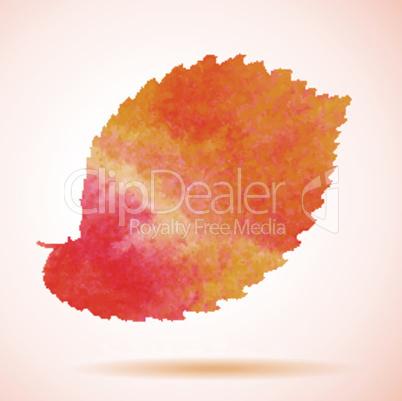 Orange watercolor painted vector elm tree leaf