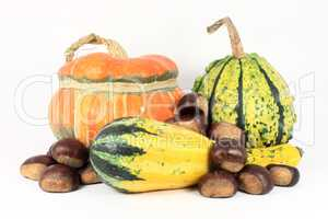 Colorful gourds with chestnuts