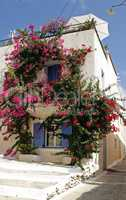 flowers around the window. Greece