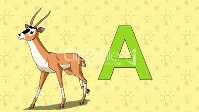 Antelope. English ZOO Alphabet - letter A