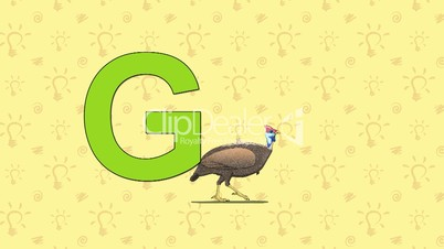 Guinea fowl. English ZOO Alphabet - letter G