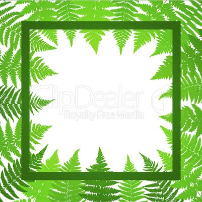 Jungle poster. Fern frond background. Vector illustration.