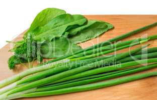 Green onions, parsley and sorrel on a white background