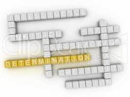 3d image Determination word cloud concept