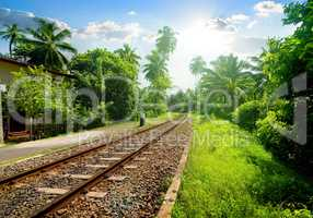 Railroad in Sri Lanka