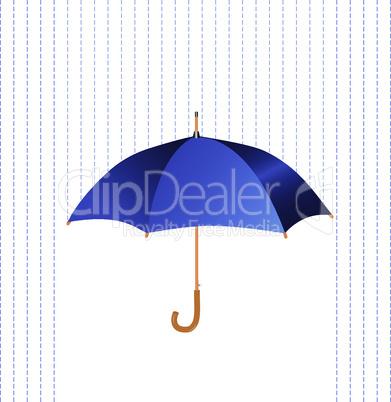 Umbrella icon with rain