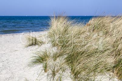 Dünenlandschaft an der Ostsee bei Heiligenhafen, Deutschland
