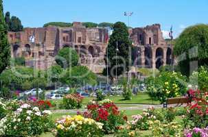 Rom Terme di Massenzio - Rome Terme di Massenzio 04
