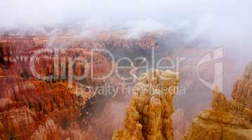 Foggy Morning at Bryce Canyon National Park, Utah