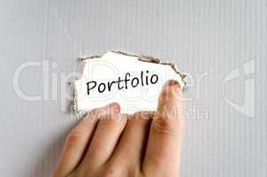Portfolio text concept