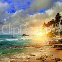 ocean, sunrise and tropical palm trees on the shore
