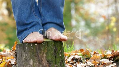 balancing on a tree stump