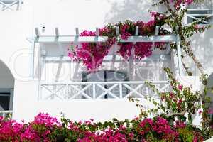 Building in traditional Greek style, Santorini island, Greece