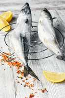 Carcasses frozen mackerel