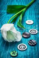 white tulip and buttons