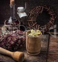 medicinal herb