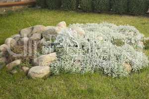 Landscape design for gardens and parks