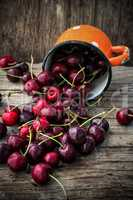 juicy and fresh berries