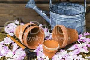 Stilleben mit Blumentopf, still life with flower pot