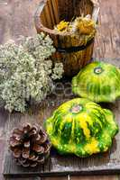 still life with autumn squash