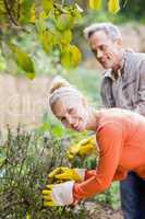 Cute couple picking aromatic herbs