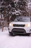 Winter Road Across Forest