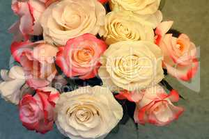 A bouquet of roses on light green background.