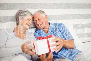 Senior man giving a surprise gift to senior woman