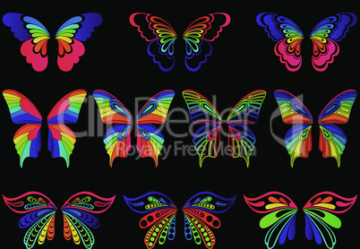 Color butterflies on the black background
