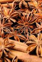 star anise fruits and seeds