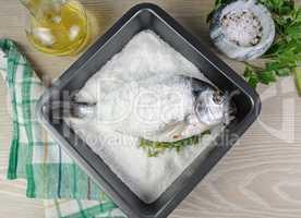 Sea bream (Dorado) baked with salt
