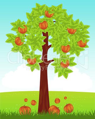 aple tree on field.eps