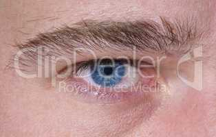 Sharp and detail macro of blue eye